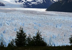 Perito Moreno Glacier - Los Glaciares National Park - Patagonia - Argentina ({ Planet Adventure }) Tags: patagonia holiday 20d ice southamerica argentina photography eos photo holidays photographer canon20d ab unesco adventure backpacking planet iwasthere peritomoreno lagoargentino canoneos naturalworld icebergs allrightsreserved worldheritage digitalphotography havingfun holidayphotos aroundtheworld copyright visittheworld ilovethisplace glaciallake travelphotos digitalworld placesilove traveltheworld travelphotographs canonphotography alwaysbecapturing 20070107 worldtraveller planetadventure outstandingshots lovephotography colorfulworld theworldthroughmyeyes beautyissimple loveyourphotos theworldthroughmylenses shotingtheworld by{planetadventure} byalessandrobehling icanon icancanon canonrocks selftaughtphotographer phographyisart travellingisfun lostglaciaresnationalpark alessandrobehling copyrightc copyrightc20002007alessandroabehling topphotography holidayphotography copyright20002008alessandroabehling colorfulearth photographyisgreatfun