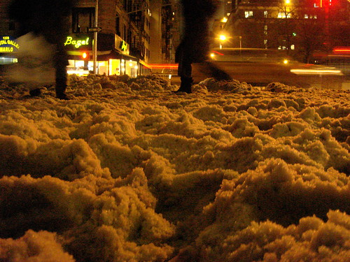 Ice Storm (8)