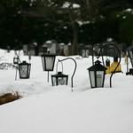Snow lanterns thumbnail
