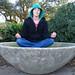 Forsythe Park Zen