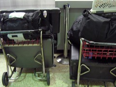Luggage Carts at MIA