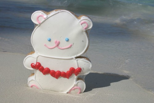 Cookie Bear on the beach
