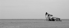 Pump Jack (Jim Frazier) Tags: 2003 road trip travel vacation blackandwhite bw white black building industry monochrome grass buildings landscape scenery colorado industrial alone technology desert empty may meadow structures machine engineering cybershot roadtrip monotone structure equipment machinery oil grasses desaturated lonely prairie minimalism grassland solitary emptiness q3 apparatus vg oilwell pumpjack bwset v500 v1000 jimubs jimfraziercom