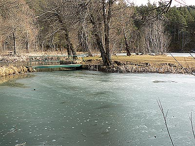 L'étang glacé