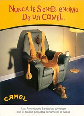 CAMEL-12