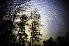 Popcorn Skies - by Southernpixel
