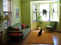 Living Room (j_fer_rose) Tags: before apartmenttherapycure apartmenttherapydc atgreencure
