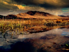 Colours of scotland (Nicolas Valentin) Tags: sky reflection water scotland scenery lochlomond conichill bahalma