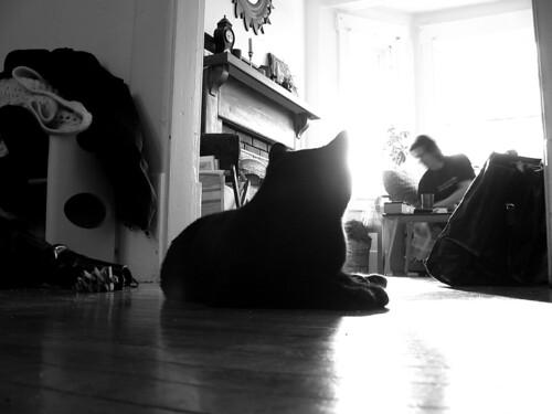 Oskar and Starcat