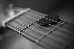 Gibson Pick (joe.langley) Tags: bw music white macro closeup martin guitar instrument pick gibson blackand artlibre impressedbeauty