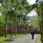 Botanischer Garten Terra Nostra