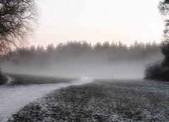 A man walking his dog ( B i b b i ) Tags: winter sunset mist fog vinter sweden solstice wintersolstice yule sverige solnedgng dimma ngby judarnskogen amanwalkinghisdog enmanrastarsinhund vintersolstndet