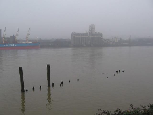 fog_river