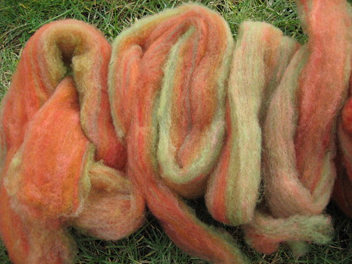 dyed cormo, recarded