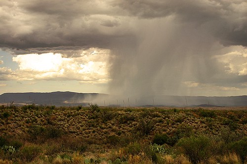 rain over big bend