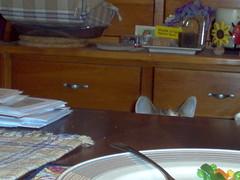 I Hear Food!