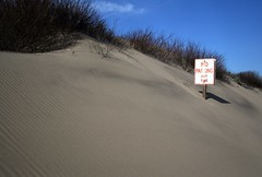 No parking - 2 (Dill Pixels (THE ORIGINAL)) Tags: california shadow sky usa sign sand weeds buried noparking dune burial centralcoast pescadero uhoh anytime donttrythisathome inundation cautionblowingsand