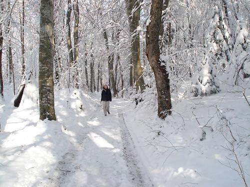 Hiking near Home