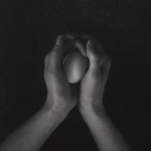 Egg  �  1.28.07