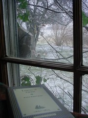 View from the window on a wintry day