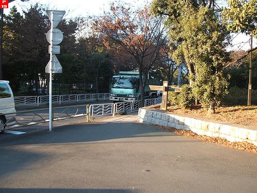 東京辰巳国際水泳場から新木場駅へ