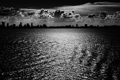 Sunset in Miami (DanielN) Tags: sunset bw skyline florida miami bnw picturethecure2008