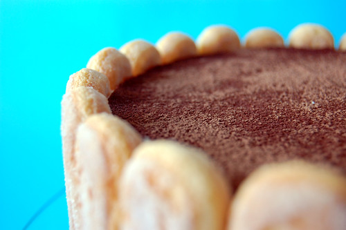 Tiramisu Cake Closeup