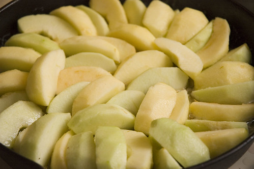 raw naked apple slices