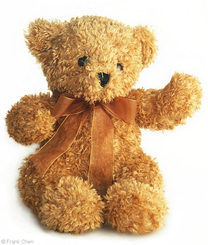 Sang Teddy