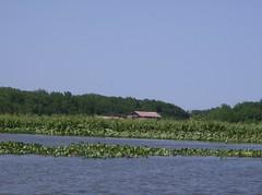 Laguna de Sinamaica
