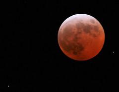 Bijna 0.00 uur (Truus) Tags: 3 night wow shots zon nightphotos achterhoek lunareclipse outstanding beltrum maart maan truus 2358 outstandingshots anawesomeshot colorphotoaward ilovethismoon