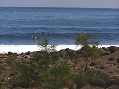 waipio valley, big island (the masked marauder) Tags: hawaii waipio