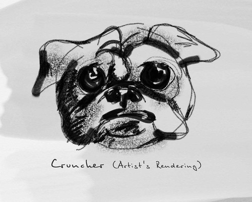 Cruncher (Artist's Rendering)