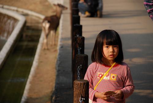 La ancestral Nara. Por Japón (5)