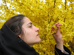 the smell of spring (Alieh) Tags: new portrait flower persian spring bravo iran year eid persia newyear smell iranian  esfahan isfahan  persiannewyear      khorshid mahdieh iraniangirl 1386 iraniannewyear aliehs alieh      booyebahar