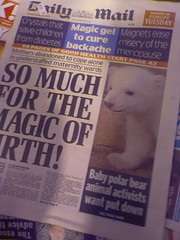 Knut erobert die Welt
