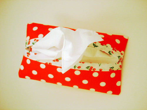 tissue holder | passo #7