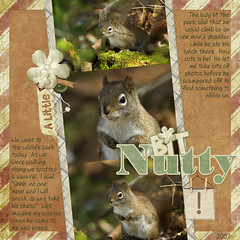 A Little Bit Nutty!