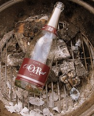 Cava in the grill