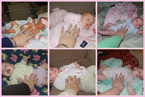 Lilli 6 months