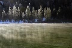 Cool (Walter Quirtmair) Tags: morning trees winter light water austria pond haze february swq takenbywalter 2007 hinterstoder schiederweiher sigma1770 eos400d impressedbeauty