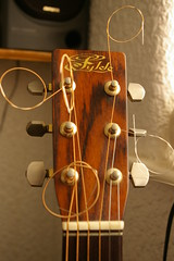 Fylde Headstock (Waka Jawaka) Tags: music brown guitar things musical instrument acoustic favourite fylde march2007