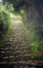 Just One More....... (Trapac) Tags: summer mountains green film peru southamerica up rain clouds gold rocks kodak cusco steps olympus cobblestones staircase andes machupicchu phew incatrail steep kodakgold bfbeforeflickr olympusmjuvallweather agreefee flickrcollectionongetty