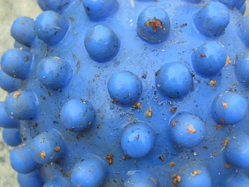 bigger blue