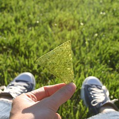 guacamole chip (dotpolka) Tags: berkeley california green grass guacamolechip hand feet chucks me themegreen