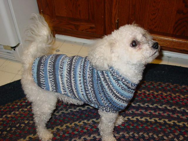 Ravelry The Original Custom Fit Dog Sweater Pattern By Esther Smith