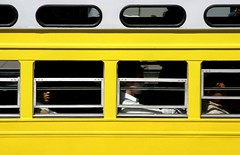 Yellow (Thomas Hawk) Tags: auto sanfrancisco california deleteme5 deleteme8 usa deleteme deleteme2 deleteme3 deleteme4 deleteme6 deleteme9 deleteme7 car topv111 train automobile saveme4 saveme5 saveme unitedstates saveme2 saveme3 deleteme10 10 trolley ttc unitedstatesofamerica muni transit mass streetcar trolleys ftrain fline streetcars fmarket fav10
