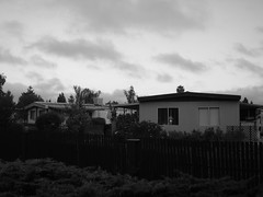 My first experiment in Black and White Photography (jasmeet) Tags: rohnertpark