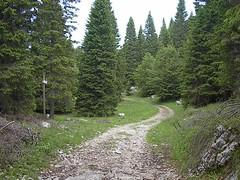 IM001210 (Greyo) Tags: mountainbike asiago