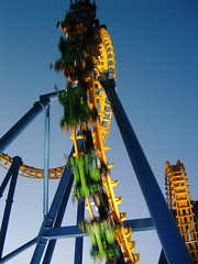 Startups are like a Roller Coaster